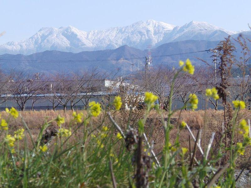 冬景色2010.01.04 034