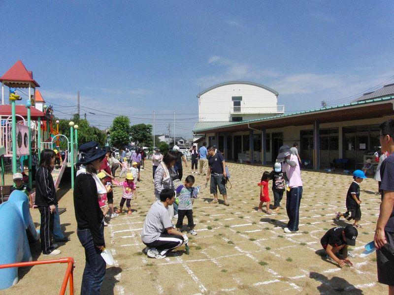 川内保育園 園庭芝生化 040